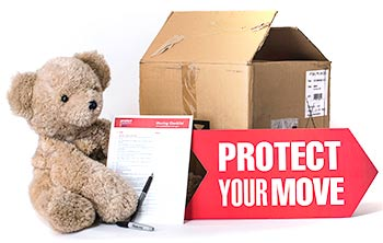 Protect your move bear and moving checklist