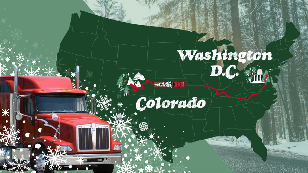 Share Our Roads Safely with the U.S. Capitol Christmas Tree