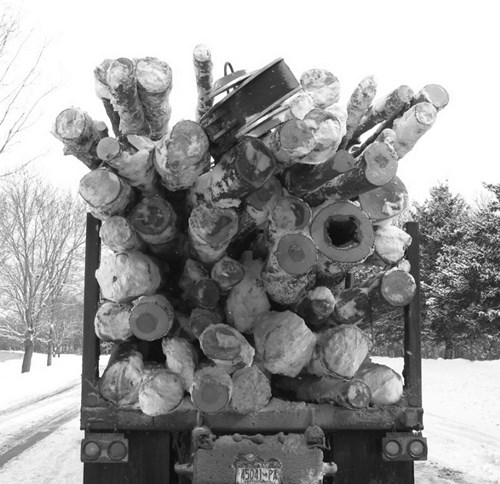 Picture of the back of truck hauling a cargo of logs.