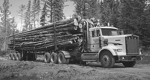 Picture of truck hauling a cargo of logs