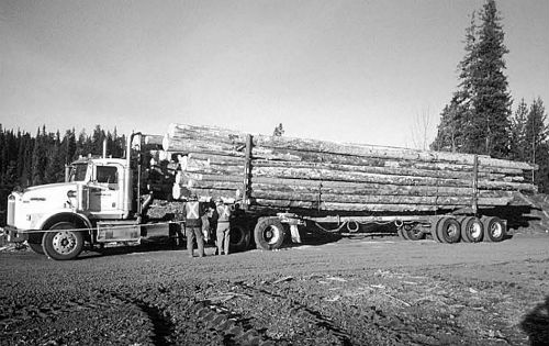 Picture of a truck with a cargo of logs.