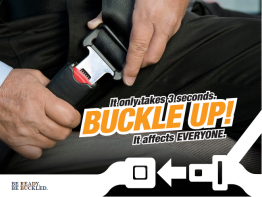 Graphic from Buckle Up! Campaign Brochure